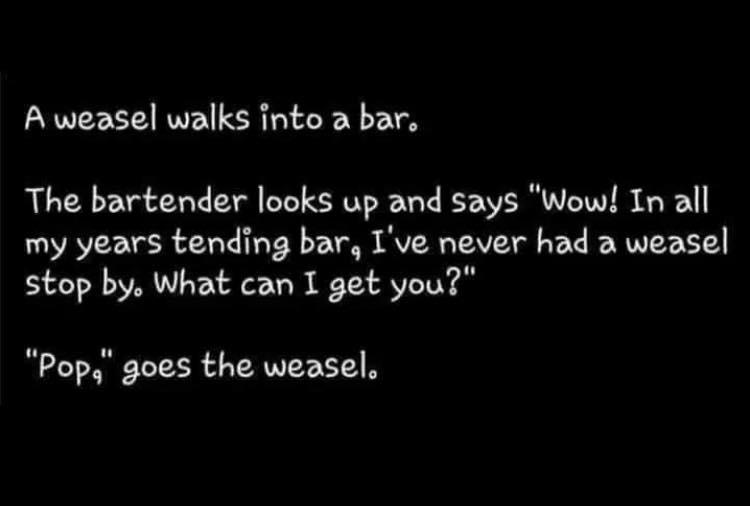 a weasle walks bar.jpg