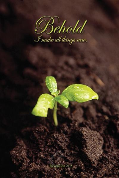 behold-seedling-revelation-biblical-inspirational-poster-2400-0012_grande (1).jpg