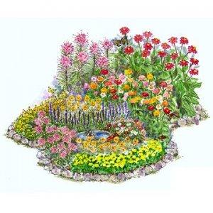 butterfly_garden_bhg.jpg