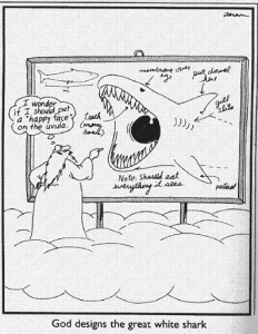 God designs the Great White.png