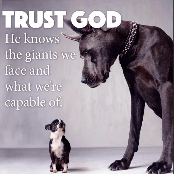 trust God 496.png