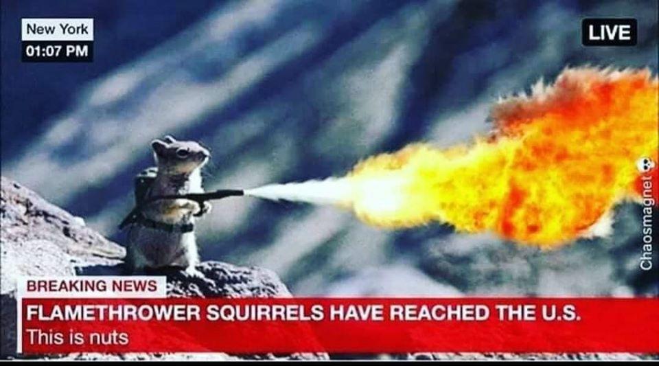 flamethrower squirrels.jpg