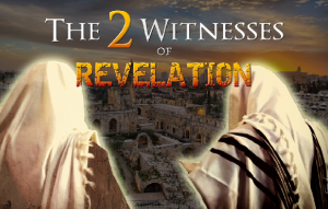 Two wintess Rev.png