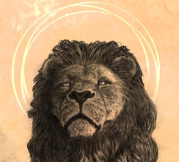 lion messiah face.jpg