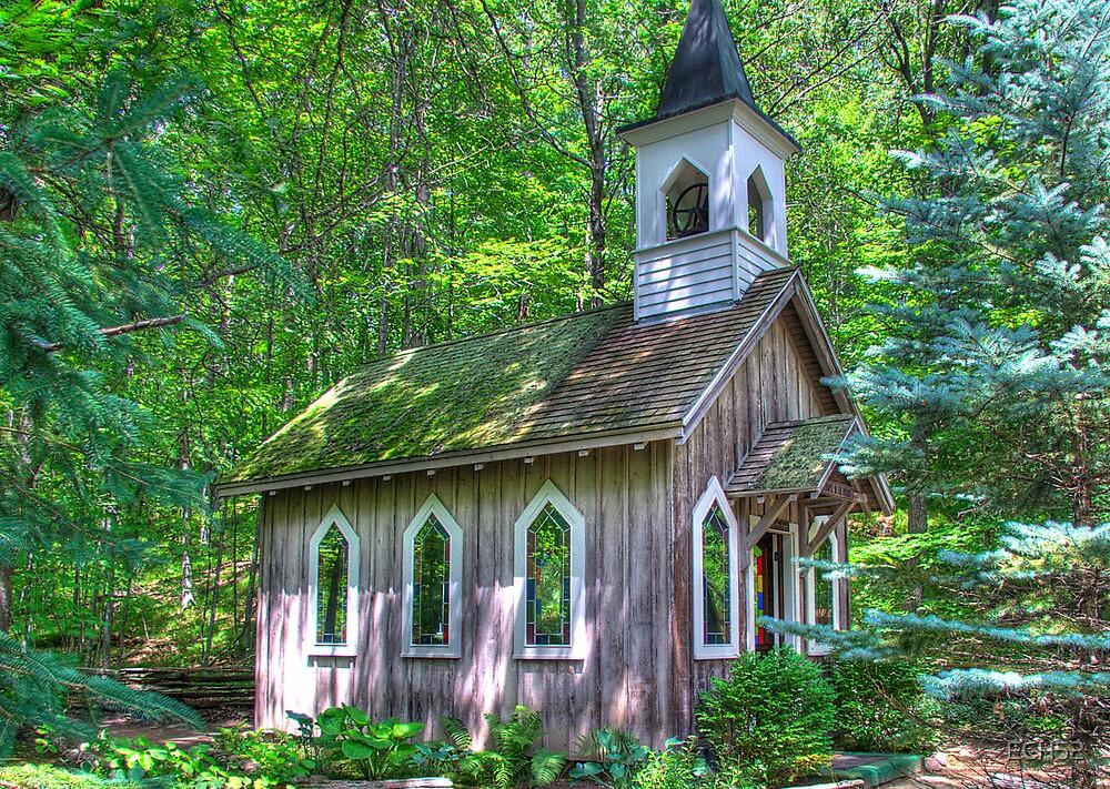 Little Church in the Woods.jpg