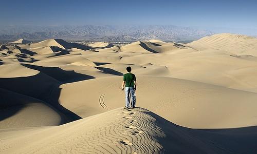 desertpath.jpg