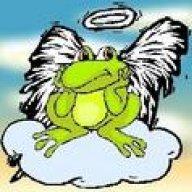 Angelfrog