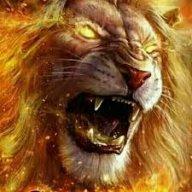 Lion Bravehart
