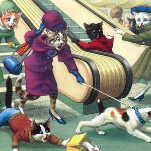 Cats shopping