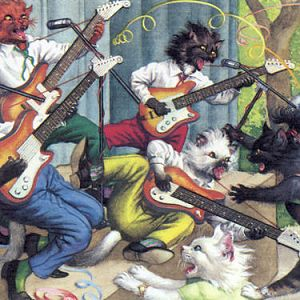 Rock and roll cats